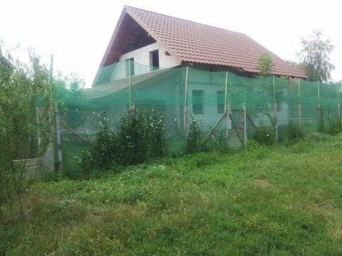 Mutarea care sperie un sat întreg din județul Satu Mare. Lumea nu mai poate ieși pe străzi