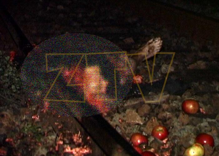 S-a sinucis aruncându-se sub roțile trenului