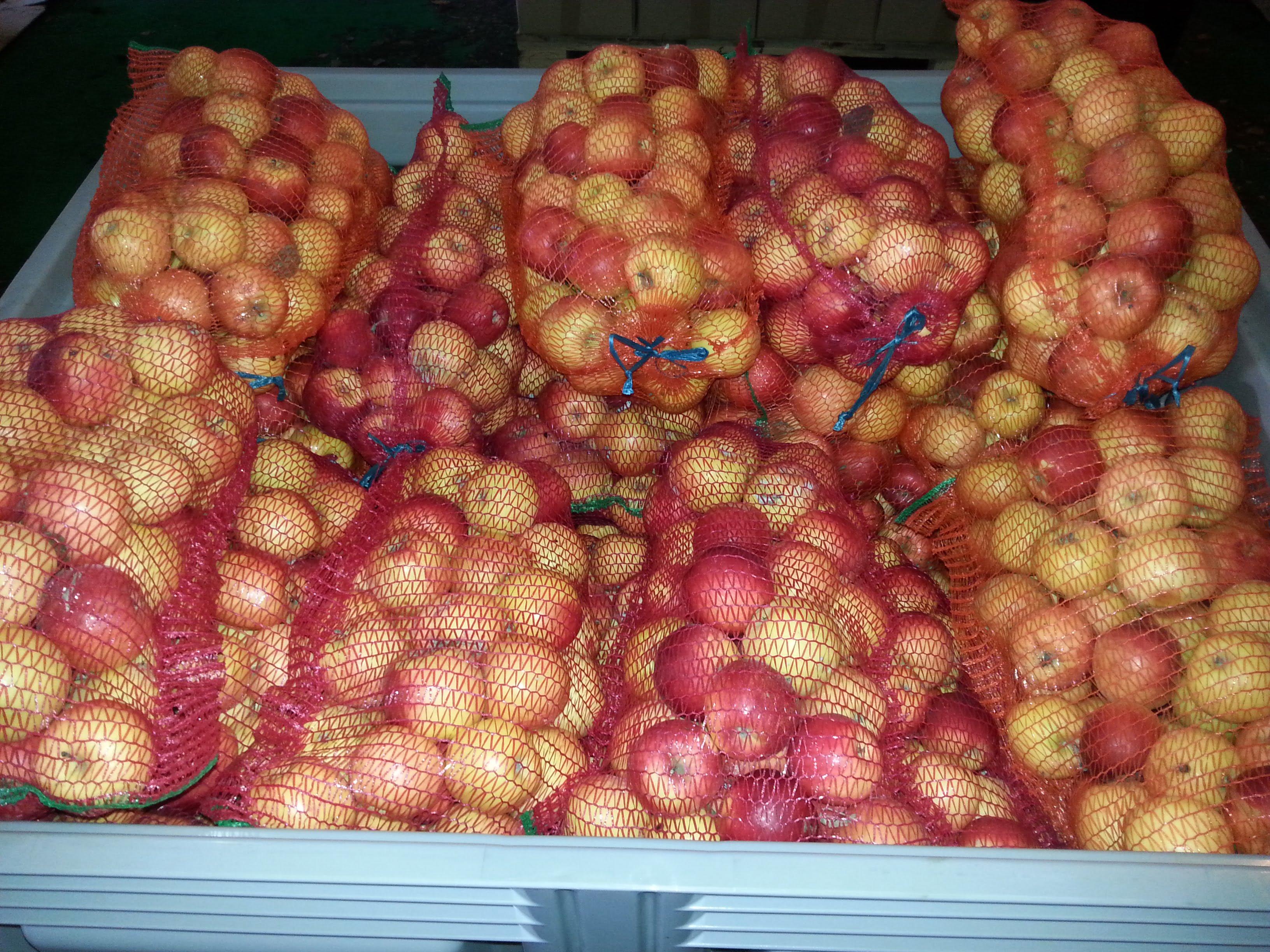 25 de tone de mere la dispoziția sătmărenilor. Trebuie doar să vă prezentați la Crucea Roșie