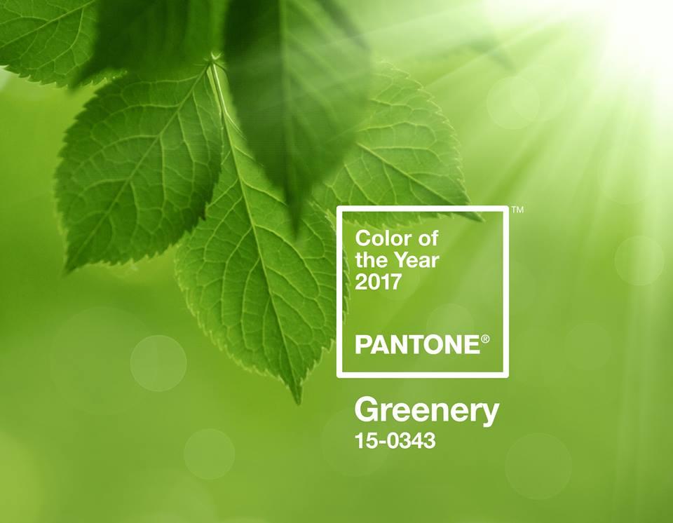 Pantone, culoarea anului 2017. Ce ținută cu această culoare propune un designer sătmărean