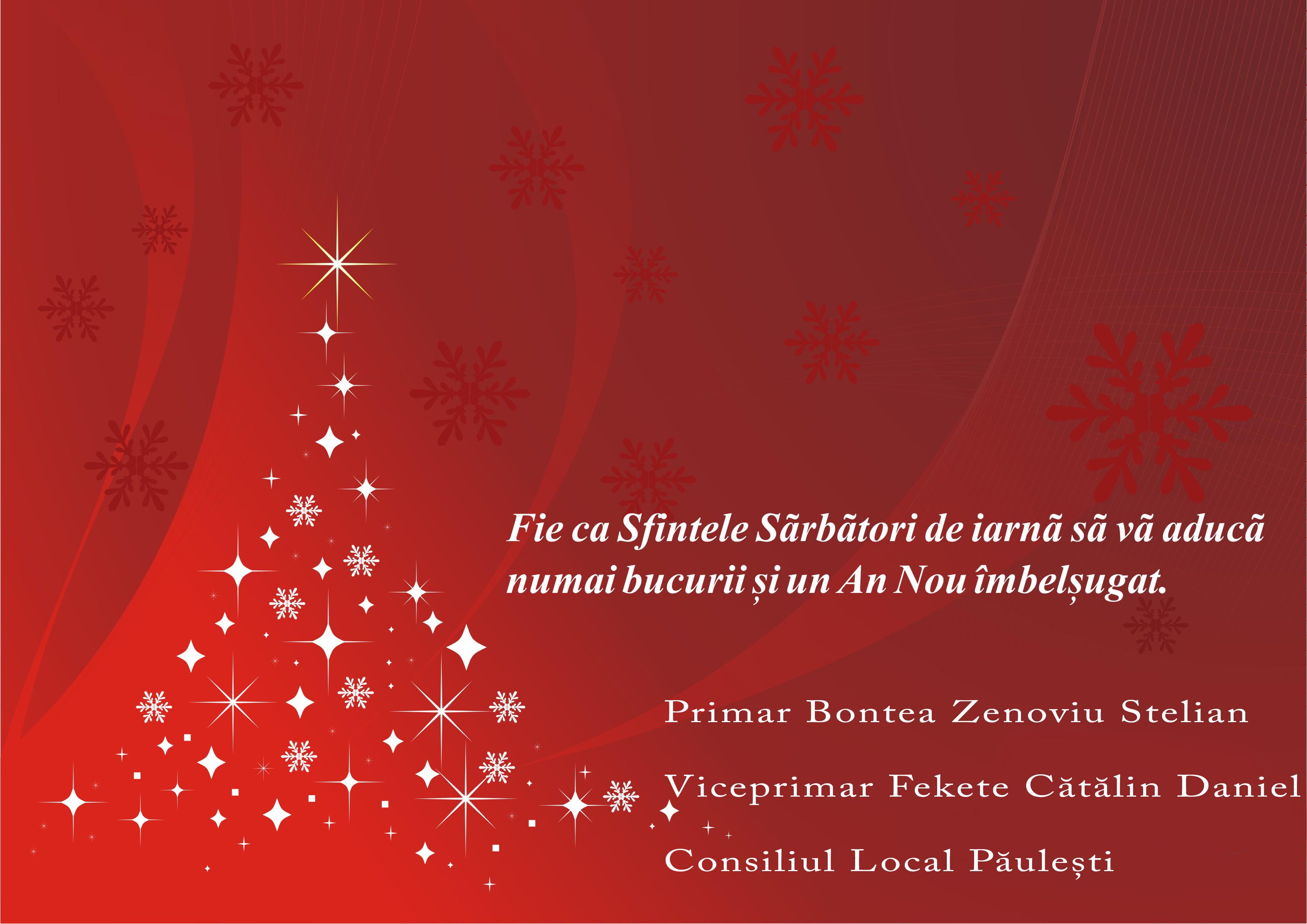 Mesajul primăriei Păulești pentru toți sătmărenii, în Ajun de Crăciun
