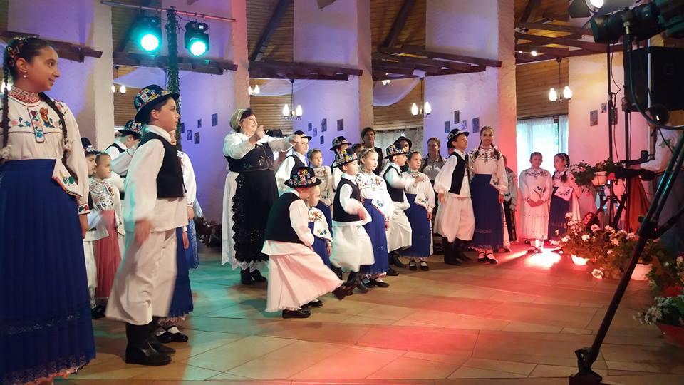 Cum a ajuns Satu Mare printre singure județe fără dansatori populari profesioniști și cât de anostă e viața culturală de la sate
