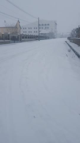 Zăpada cu bun simț la Satu Mare. Zona Oaș, cea mai afectată de ninsori