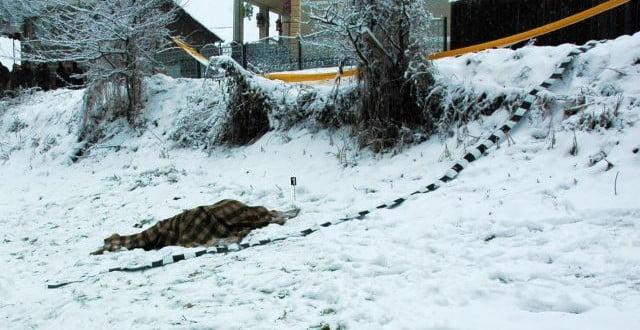 Încă o persoană a murit din cauza frigului în județul Satu Mare