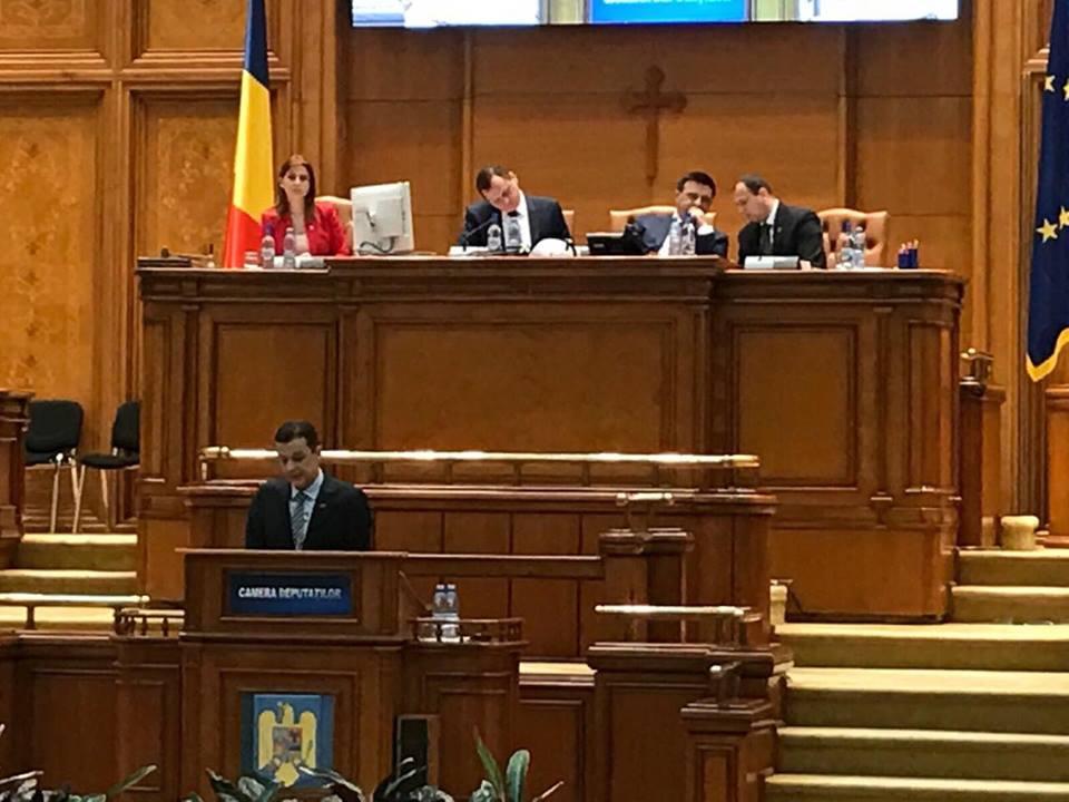Ioana Bran a fost reconfirmată, prin vot, secretar al Camerei Deputaților