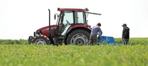 """Deputatul Lóránd Magyar se adresează Ministrului Agriculturii: """"Să îi ajutăm pe cei peste 200 de tineri"""""""