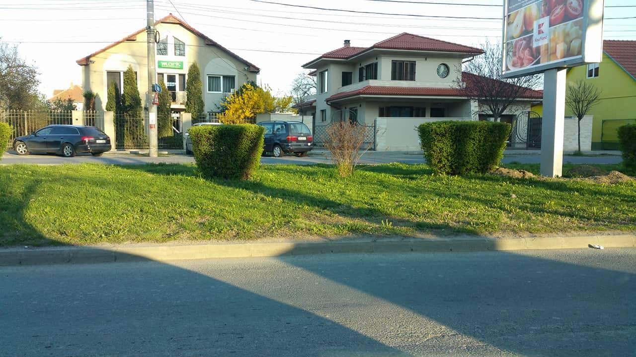 Cum spațiul verde poate deveni loc de parcare, la Satu Mare