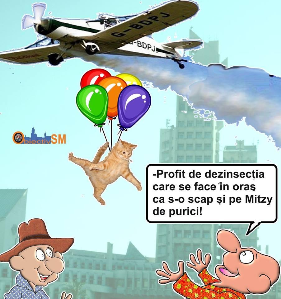 CARICATURA ZILEI!! Și purecii lui Mitzy zboară