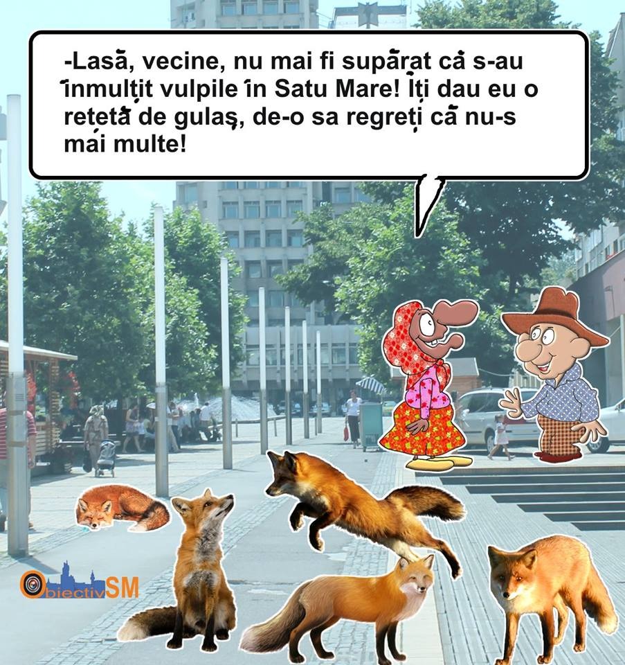 CARICATURA ZILEI!!! Sătmăreanul păcălit de vulpe