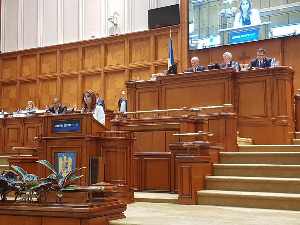 """Noul Guvern a început treaba. Deputat Ioana Bran: """"Continuăm să ridicăm nivelul de trai"""""""