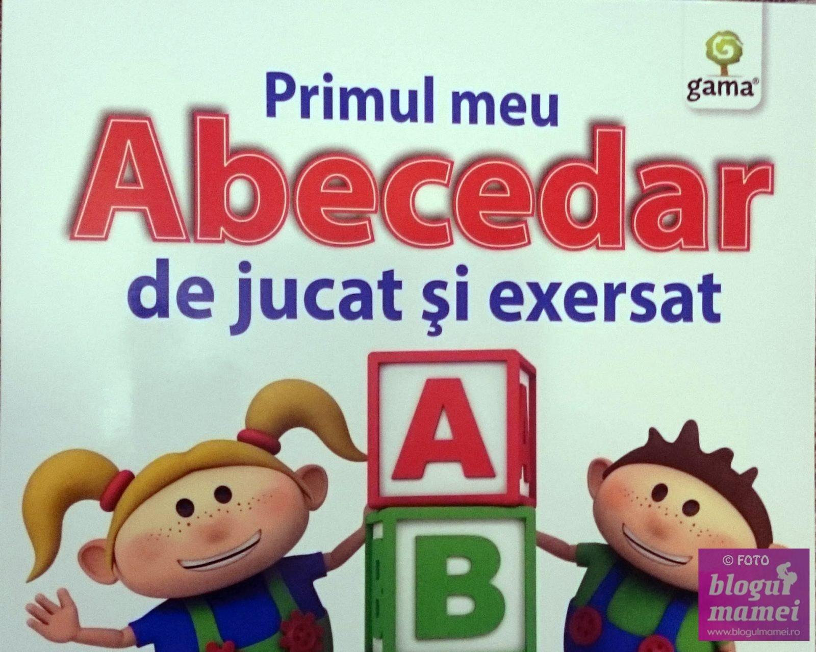 Limba română, limbă străină în școlile comunității maghiare? Ce spune un deputat sătmărean despre predarea limbii române
