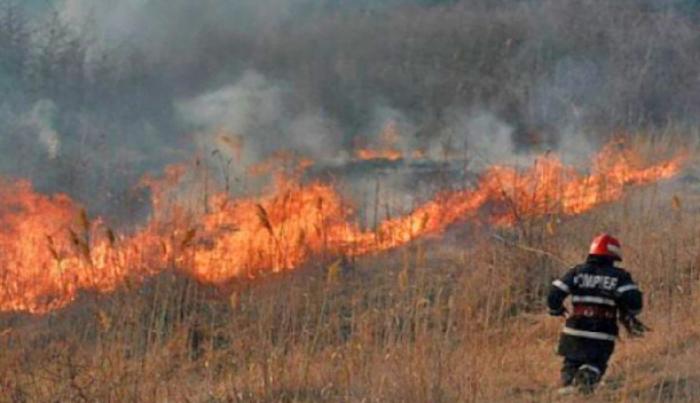 Incendiu de vegetație în Turulung Vii. Pompierii din Turț au rezolvat rapid problema