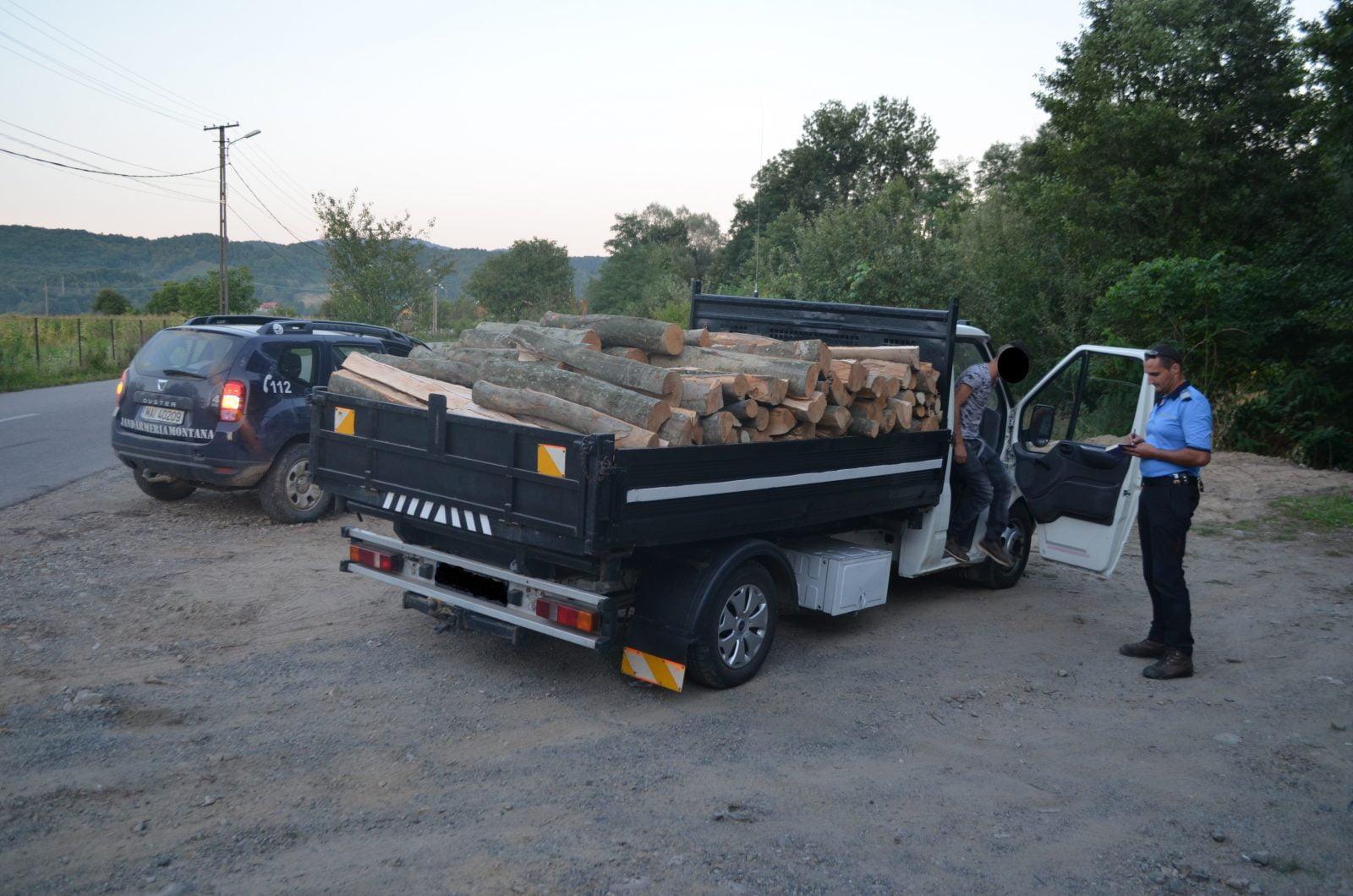 Jandarmii din Tășnad au oprit un transport ilegal de lemne