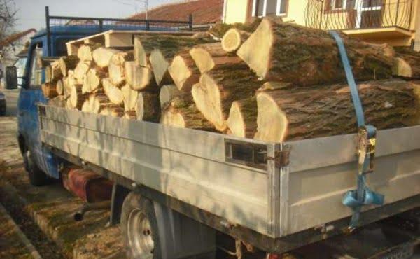 Jandarmii din Tășnad au mai oprit un transport ilegal de lemne