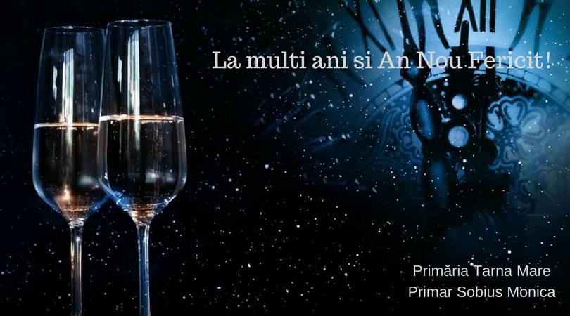 Mesajul primarului din Tarna Mare, Monica Sobius, pentru toți sătmărenii, în prag de Anul Nou