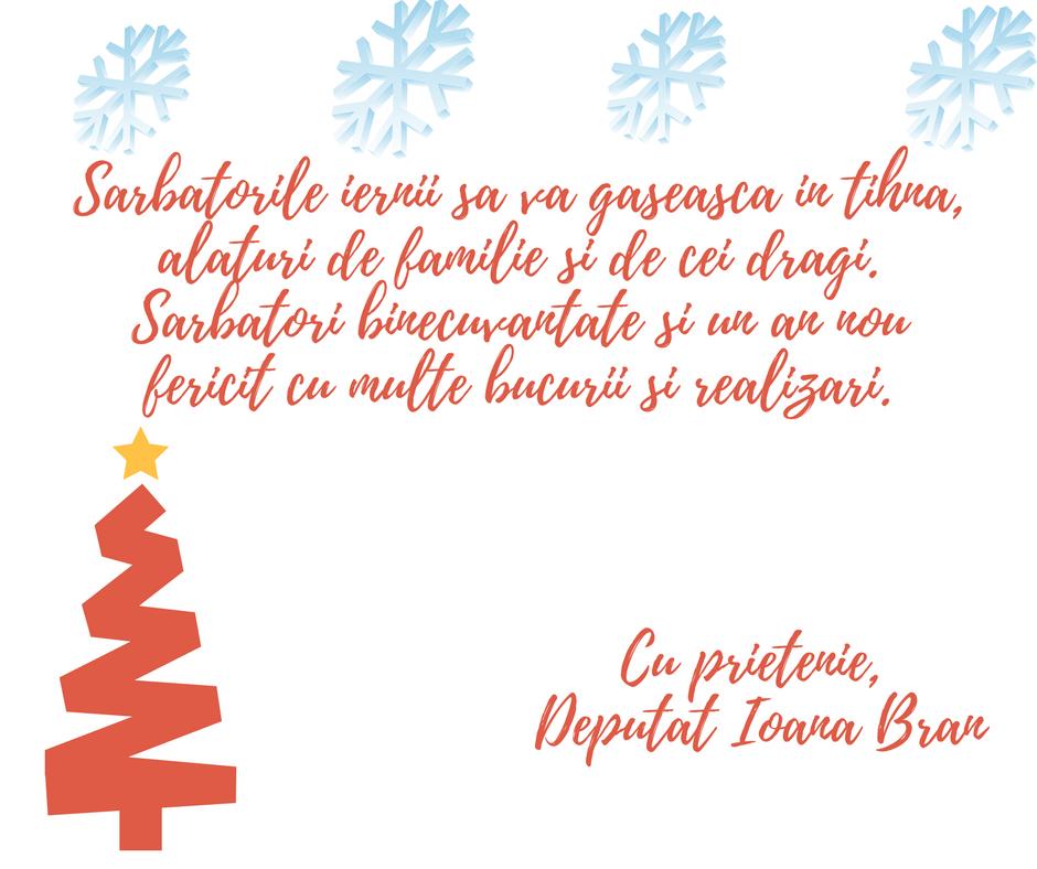 Mesajul de Crăciun al deputatului PSD Ioana Bran, pentru toți sătmărenii