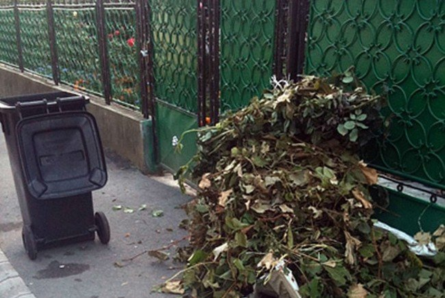 """""""Curățenia de toamnă"""" făcută de Primăria Municipiului Satu Mare"""