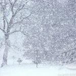 Situații înregistrate în municipiul SM in urma ninsorii abundente