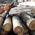 Polițiștii din cadrul Posturilor de Poliție Comunale Homoroade și Viile Satu Mare au ridicat în vederea confiscării 3 mc de material lemnos