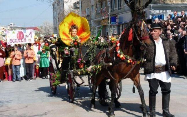 Sătmărenii sunt invitați la Parada Florilor – anul acesta se pune accent pe nevoia de spații verzi
