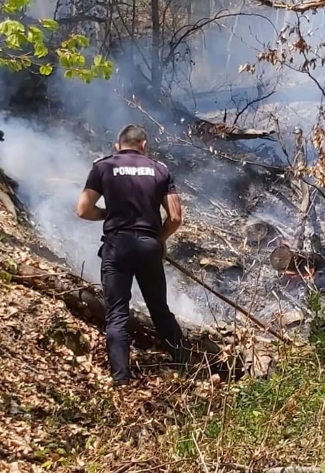 Pompierii s-au luptat 24 de ore cu un incendiu pe 50 de hectare de pășune și pădure la Bixad