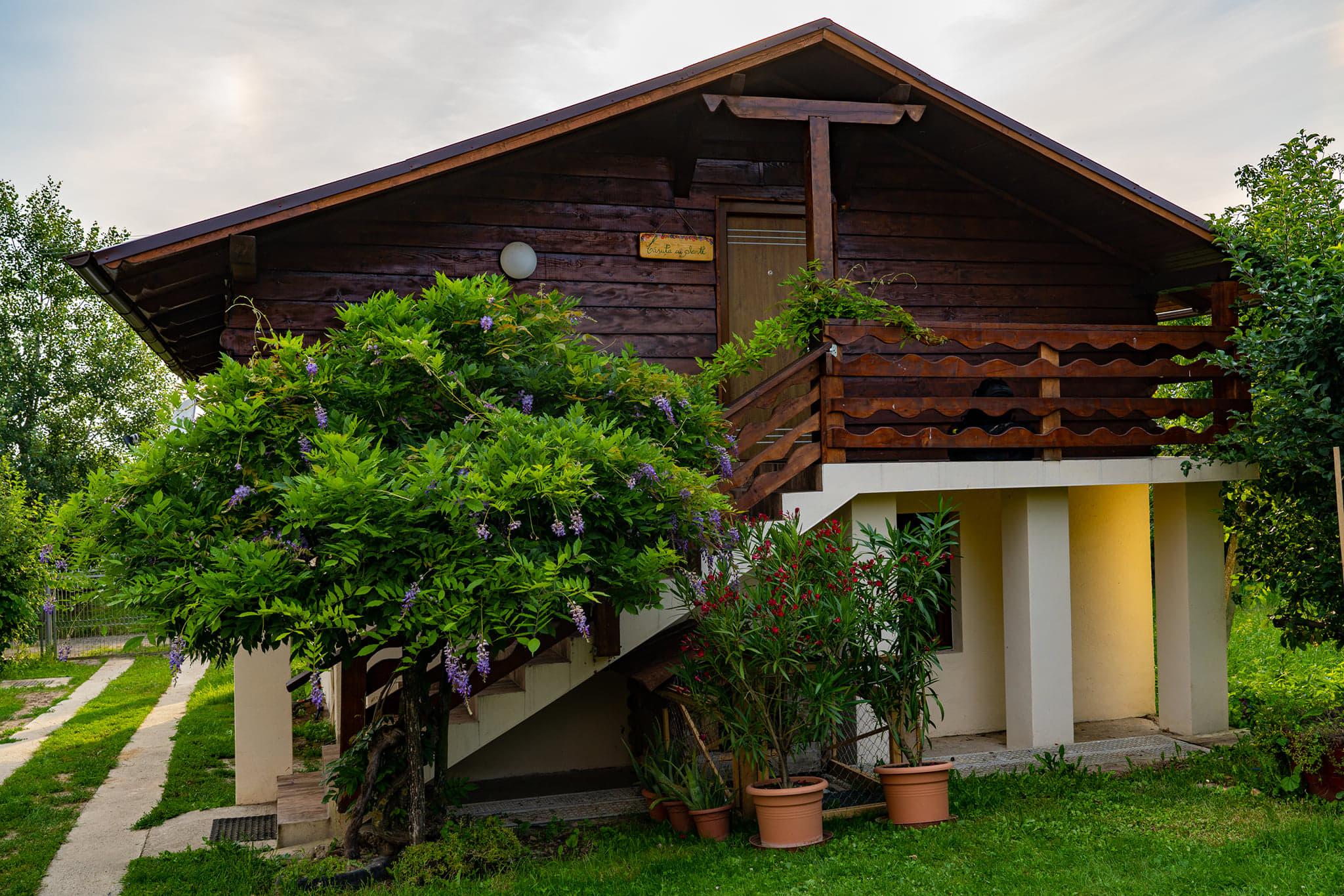 Am găsit raiul pe pământ, la un nou loc de agrement, relaxare și tratamente naturiste, la 10 km de municipiul Satu Mare